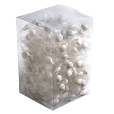 Big PVC Box with Chewy Mints